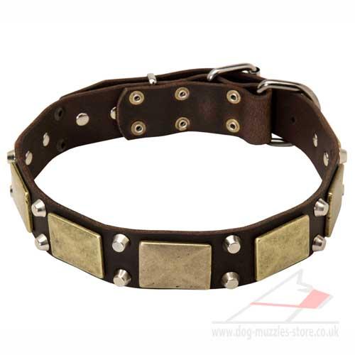 Dog Collar of Vintage Design with Old Brass Plates and Pyramids