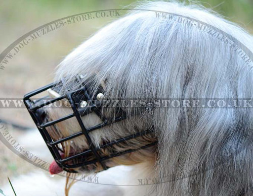 Dog Basket Muzzle With Rubberized Wire For Any-Weather Use