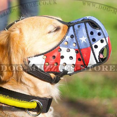 Exclusively Handmade Golden Retriever Muzzle K9