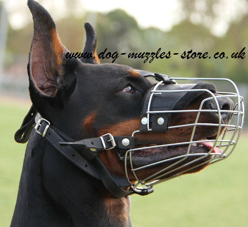Doberman Muzzles for Dogs Comfort and Safety NEW
