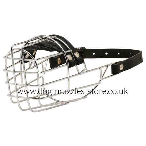 Dachshund Muzzle | Best Dog Muzzles UK