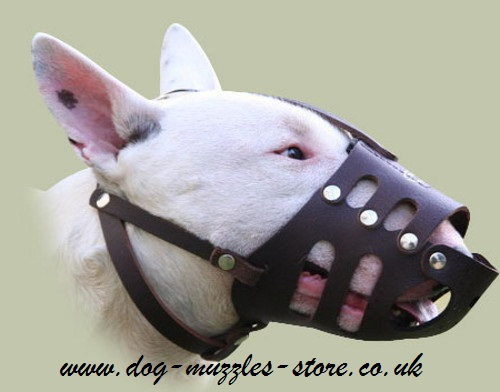 English Bull Terrier Muzzles UK Lightweight Leather Basket