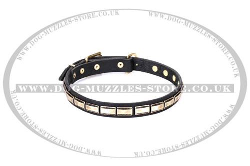 Good Quality Elegant Dog Collar FDT Artisan 1 inch Wide