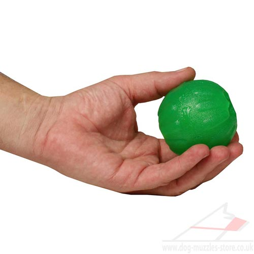 Jolly Ball Dog Toy for Treats Placing Inside