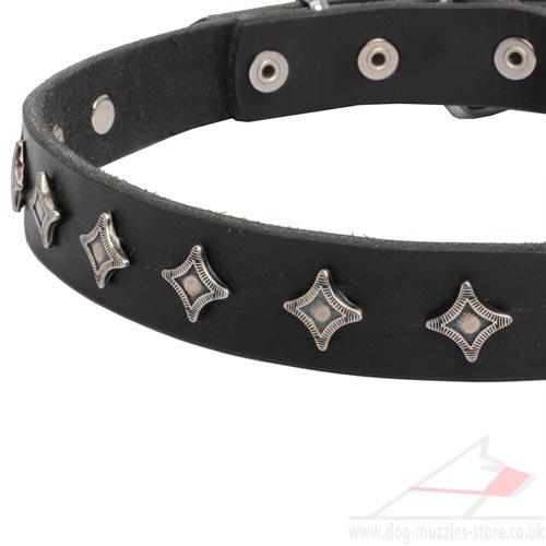 Designer Dog Collar Necklace with Silver Stars