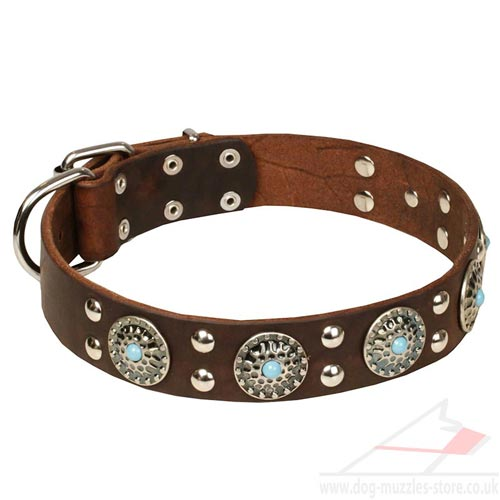 Infallible Handmade Dog Collar Leather Silver-Studded Design