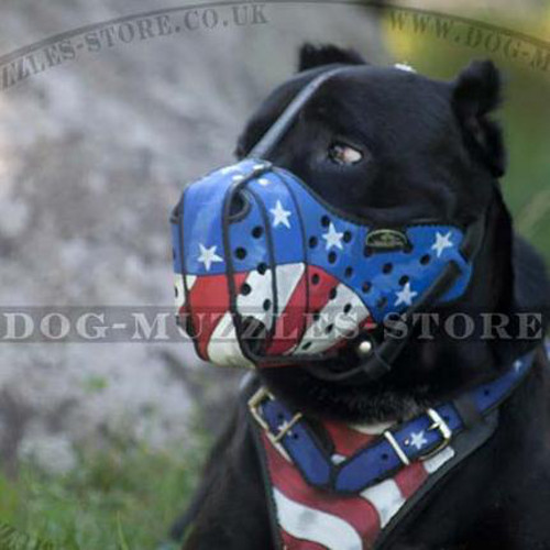 Leather Dog Muzzle for Agitation/Attack Handpainted