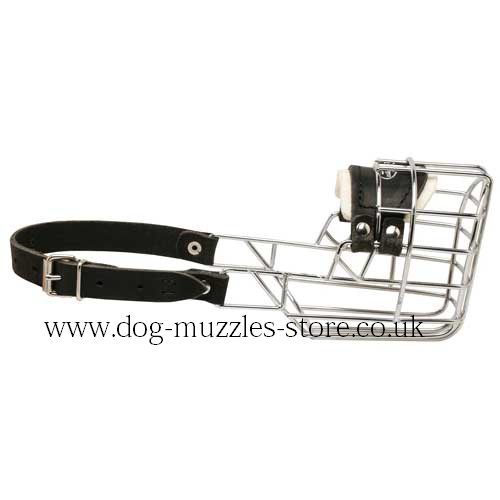 Poodle Muzzle Shape - Wire Dog Muzzles That Allow Drinking
