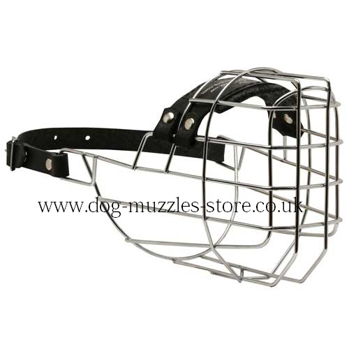Dog Muzzles UK Bestsellers for Dogs Like Rhodesian Ridgeback