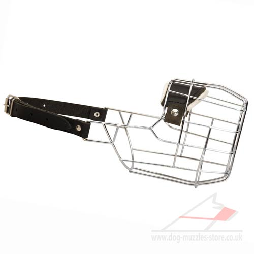 English Bull Terrier Muzzle UK | Muzzle for Bull Terrier Dogs