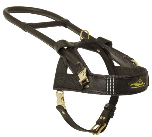 Best Guide Dog Harness UK