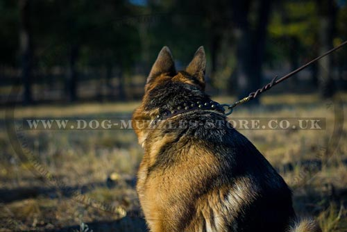 New Leather Dog Collar for German Shepherd 'Galaxy Trip'