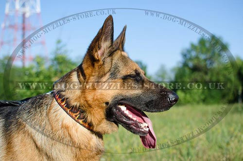 Luxury Handpainted German Shepherd Collars Flame