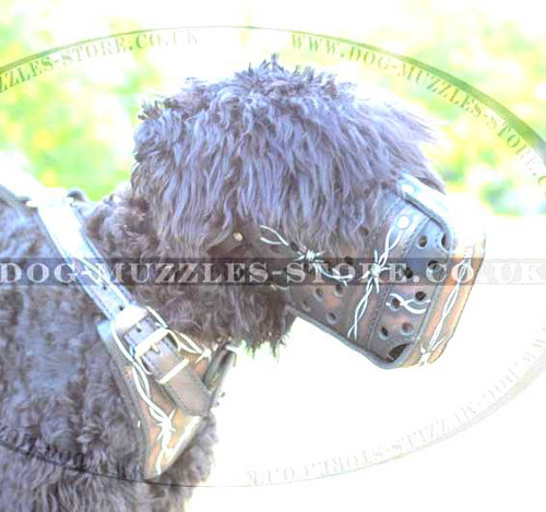 "Handmade Dog Muzzle for Black Russian Terrier ""Barbed Wire"""