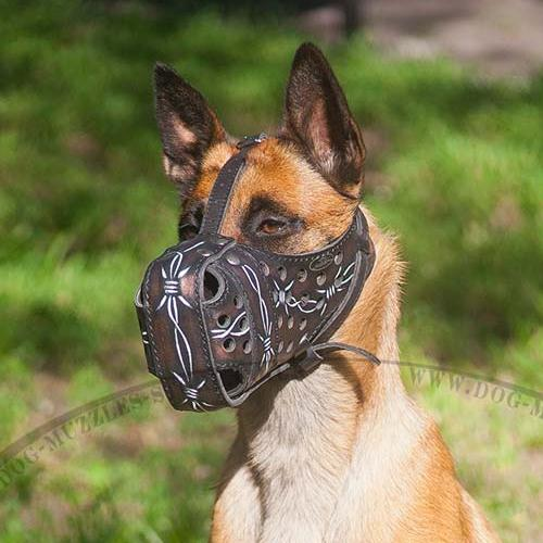 Large Dog Muzzle for K9 Dogs | Belgian Malinois Muzzle Painted