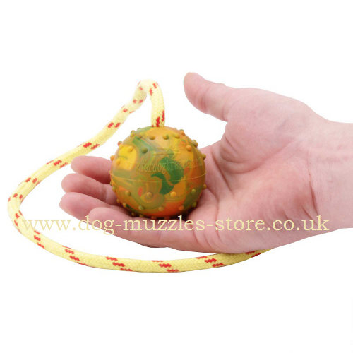 Rubber Dog Ball on Rope for Medium and Large Dogs Training - Click Image to Close
