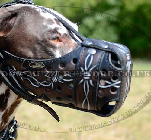 Leather Dog Muzzle for Dalmatian | Handpainted Dalmatian Muzzle
