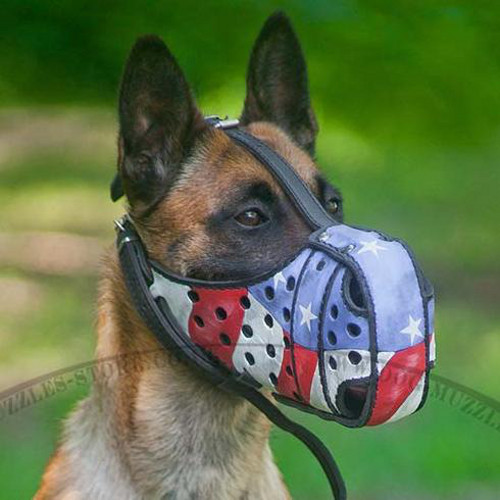 Leather Dog Muzzle K9 | Belgian Malinois Muzzle Handpainted