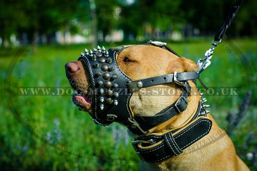 Nappa Padded Dog Muzzle for Pitbull Walking Safely