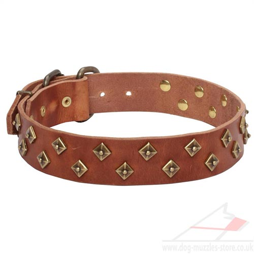 SUPER FASHION Rhomb-Studded Dog Collar Design