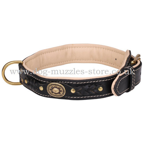 Soft Padded Leather Dog Collar with Elegant Braids and Medals