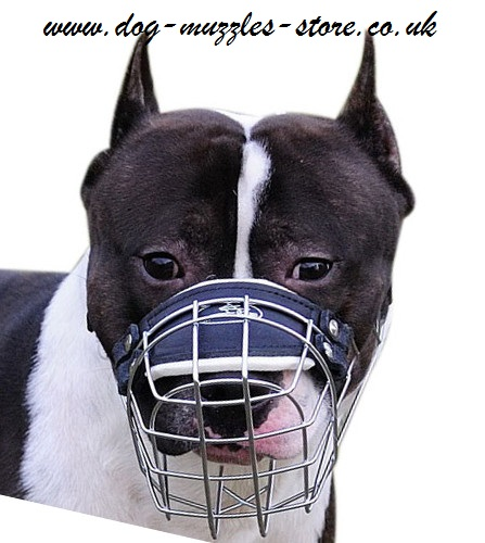 Strong Wire Basket Muzzle