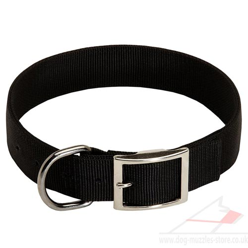 Nylon Dog Collar with Buckle for Daily Dog Walking and Training