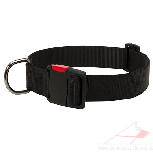 Nylon Dog Collar with Quick-Release Buckle | Strong Dog Collar