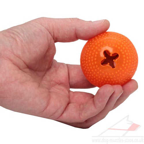 Small Dog Toy for Puppy and Little Dogs 'Orange Mood'