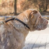 Shar Pei Dog Collar Round Leather Choker