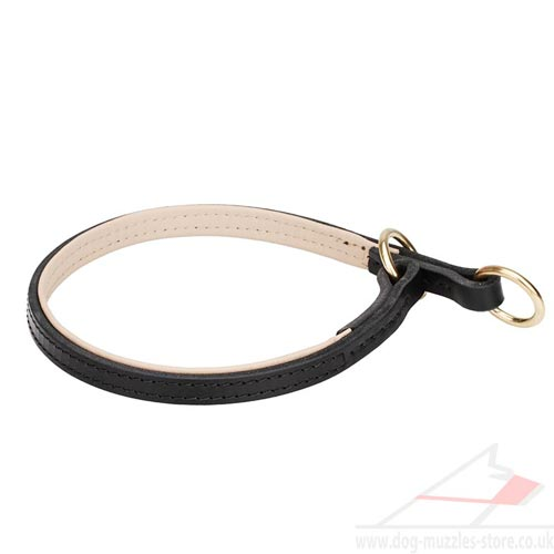Strong and Comfortable Soft Padded Dog Leather Collar Choker
