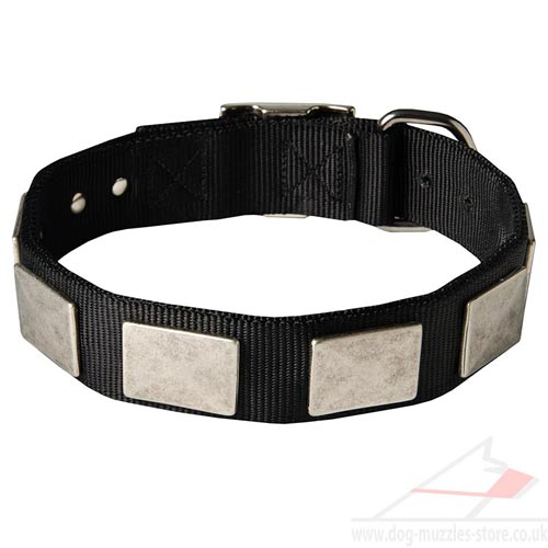 New Strong Stuff Dog Collars for Big Dogs and Middle Breeds