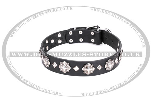 Gorgeous Leather Dog Collar Studded with Glaring Medals