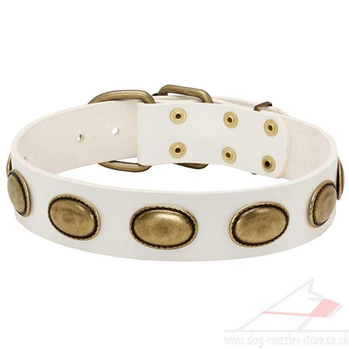 Vintage Dog Collars UK: White Dog Collar with Brass Plates