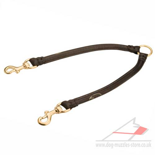 Walking Two Dogs Together Lead | Dog Lead Coupler 12 mm