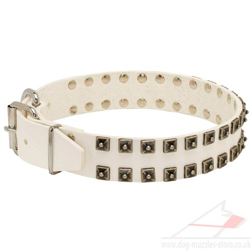White Dog Collars Caterpillar Studded Style