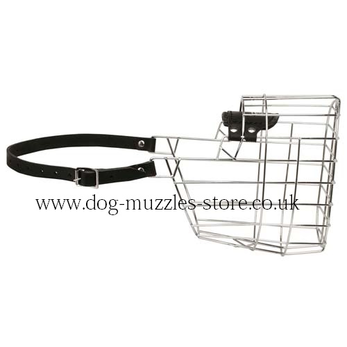Great Dane Muzzles for Dogs UK Bestsellers