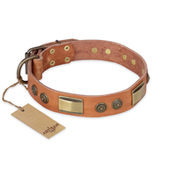 Great Leather Dog Collar FDT Artisan 'Lost Desert'