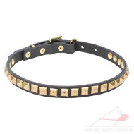 Dog Walking Collar Studded with Square Brass Pyramids