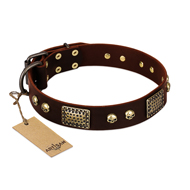 Fancy Brown Dog Collar 'Magic Amulet'