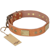 Great Leather Dog Collar FDT Artisan 'Middle Ages'