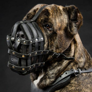 Cane Corso Muzzles for Large Dogs, Super Soft and Ventilated
