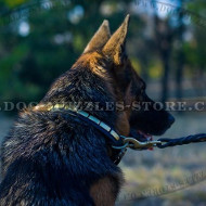 Best Leather Dog Collar with Vertical Plates for German Shepherd