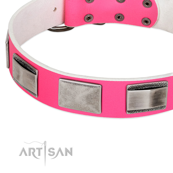 Artisan Naughty Nice Dog Collar