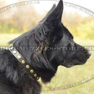 Necklace Style German Shepherd Collar