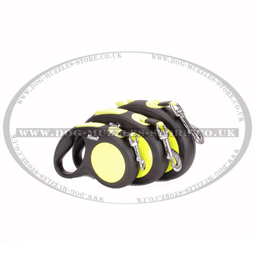 safe walking best retractive dog lead