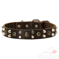 New Dog Collar Studded Leather | Studded Dog Collar New Design