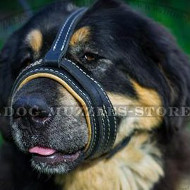Dog Barking Deterrent Muzzle for Mastiff, Soft Padded Loop Shape