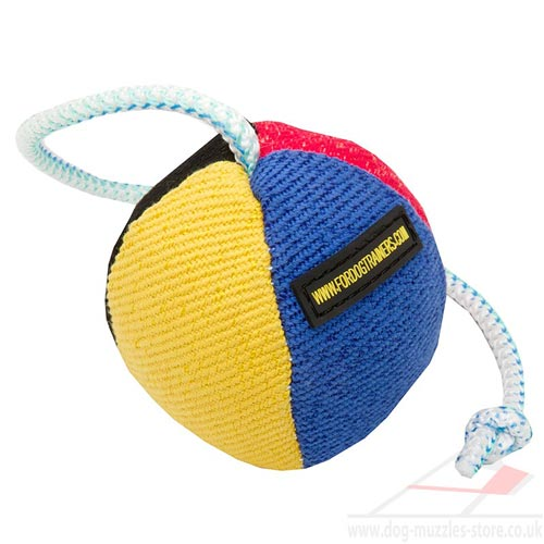 soft dog ball with rope