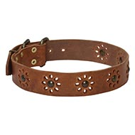 NEW 2015 Collection! Pretty Dog Collar with Flowers